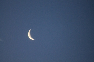 Tha almost new moon 2-17-2012 (last year...this year it has been too cloudy!!!)