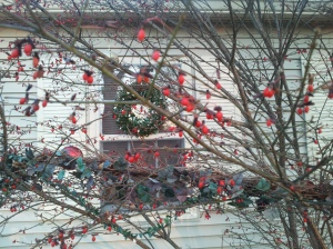 This is a favorite shot of Mom's how this year. The Most  Christmas on the Block!