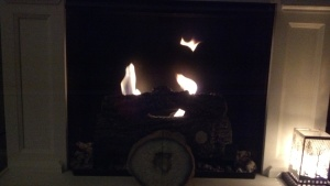 Our cozy fire tonight is warming things up!