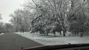 March 2013 snowfall