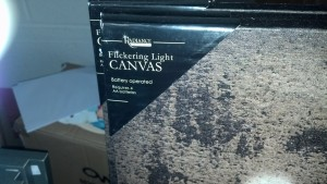 The neatest new thing we saw...pictures with flickering lights...very cool in person. Looks like candles or real lights.