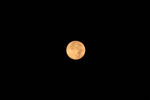 Last month's Full Corn Moon...this month is Harvest Moon!
