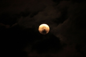 The full moon was so fun to photograph this month...lucky me!