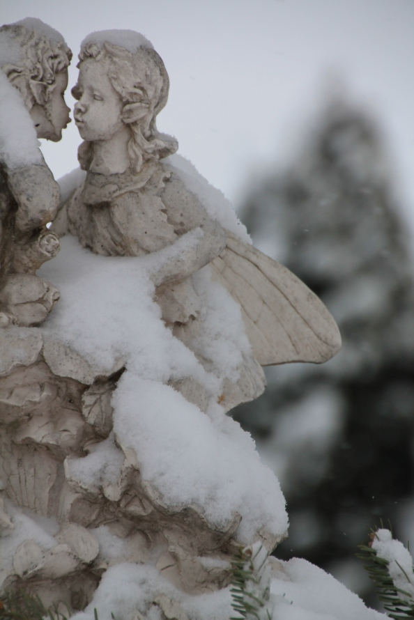 We have had this statue a very long time. I am always thrilled to see how tenderly they love each other, today in the wintery bliss.