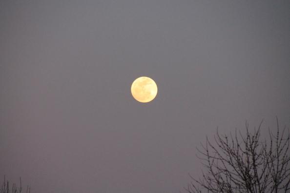 Full Moon rising 3-15-2014