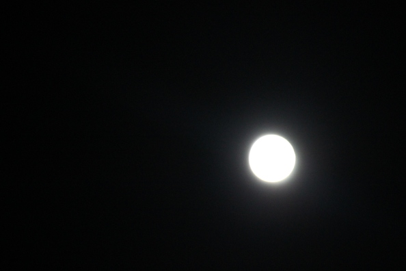 The full Flower Moon made a quick appearance around 12:50 a.m. EST...and I got the proof!