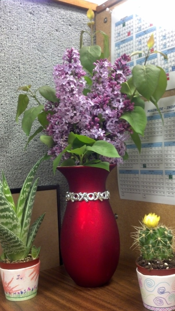 I love the way they look in that red vase!