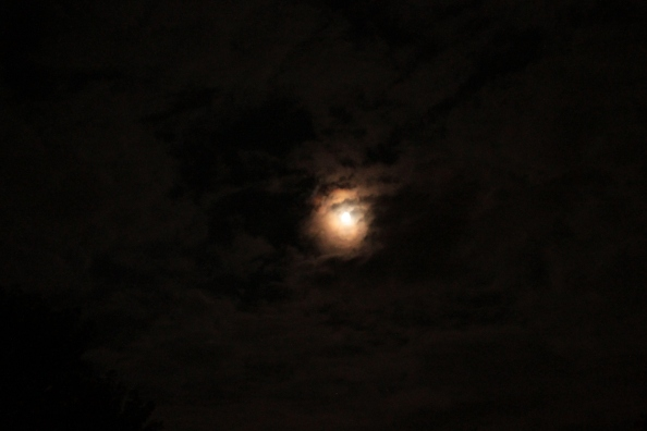 August 2014 Super Moon