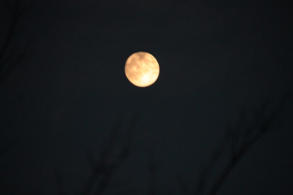 Full super moon August 2014